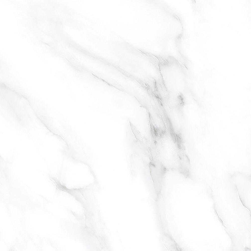 Bianco Spider